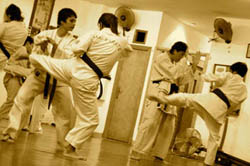 Sabaki Karate Valencia